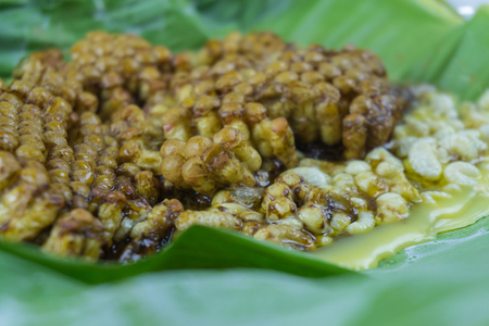 Focus honeycomb grilled on banana leaf traditional food