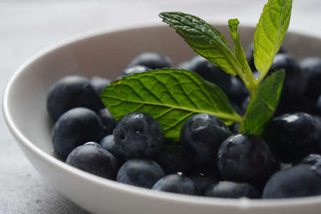 Blueberry antioxidant organic superfood in a bowl concept for healthy eating and nutrition. Close-up