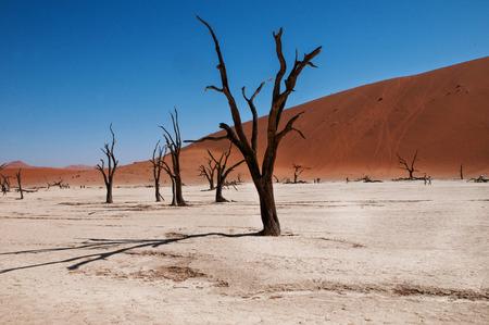 namib: Namib desert