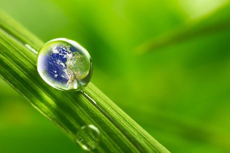 환경 보전을위한 지구 개념을 반영하는 잎에 비 방울