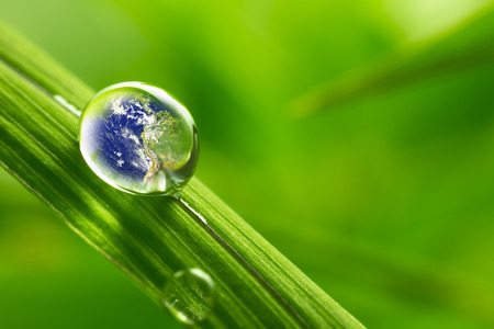 rain drop on a leaf reflecting earth concept for environmental conservation