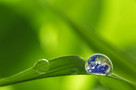 environmental conservation: rain drop on a leaf reflecting earth concept for environmental conservation  Elements of earth image courtesy NASA  http:www.killerasteroids.org