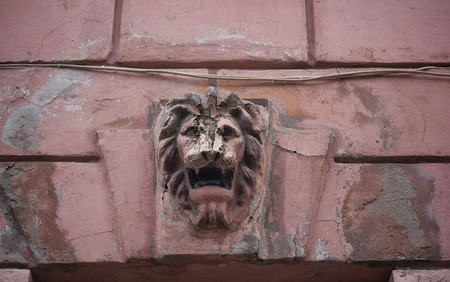 Fragment ncient pink wall with bas-relief  lions head