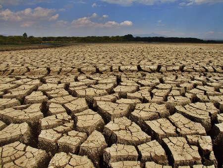 lake naivasha: Dried out mud at lake Naivasha in Kenya