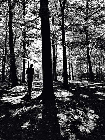 shadowy: Black and white shot of man walking in shadowy woods