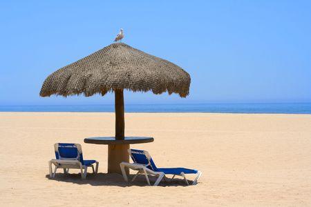 palapa: Palapa on a beautiful beach, a seagull sitting on top.  Stock Photo