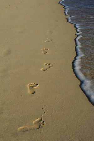 fine print: Foot steps in the sand.