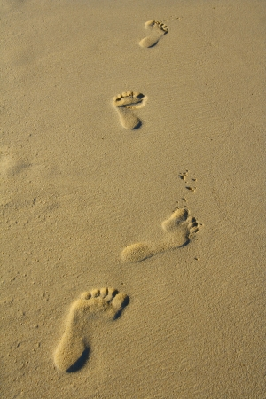 Foot steps in the sand.  photo