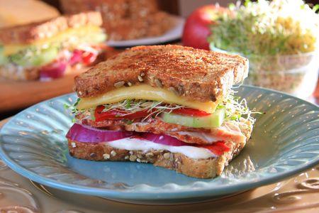 Southwestern turkey sandwich photo