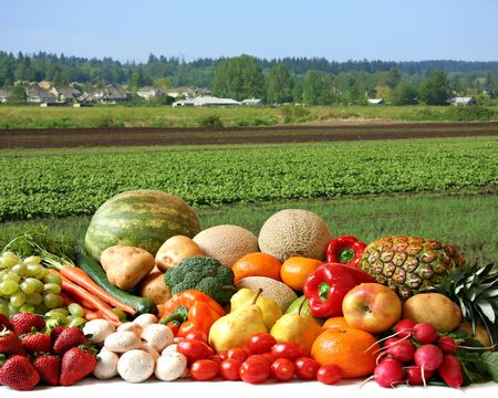 Large variety of fresh fruit and vegetables, water droplets visible at 100% in front of the farmers field.   Stock Photo