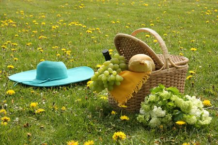 picnic basket with wine, grapes and french bread. Stock Photo - 4718366