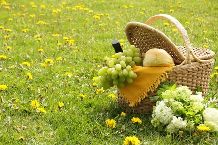 Picnic basket with french bread, grapes and wine. Stock Photo - 4718357
