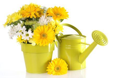 arreglo floral: Arreglo de flores de color amarillo primavera.
