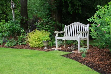 Wooden bench in a beautiful park garden. Stock Photo