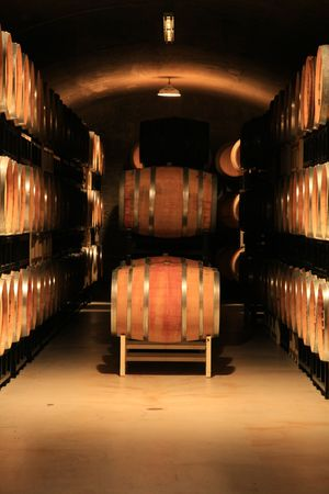 ferment: Wine barrels in a vineyard cellar. Also available in horizontal.