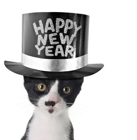 かわいい子猫新年あけましておめでとうございますの帽子をかぶっています。