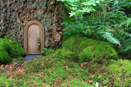 Little wooden fairy tale door in a tree trunk.  photo
