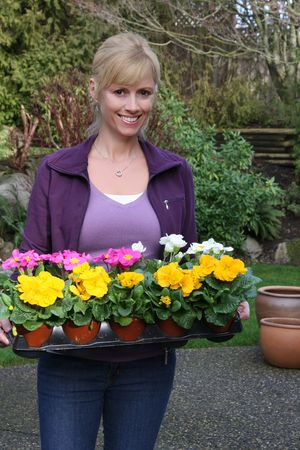 Smiling gardener with primulas ready to be planted. Also available in horizontal.  photo