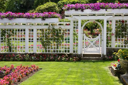 planter: Beautiful rose gated rose garden.  Stock Photo
