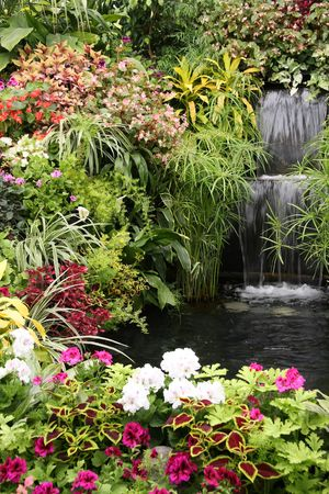 Beautiful waterfall surrounded by tropical plants and flowers.