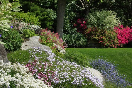 Flowering rock garden in spring. More images of this award winning garden in my portfolio. Also available in vertical.  photo