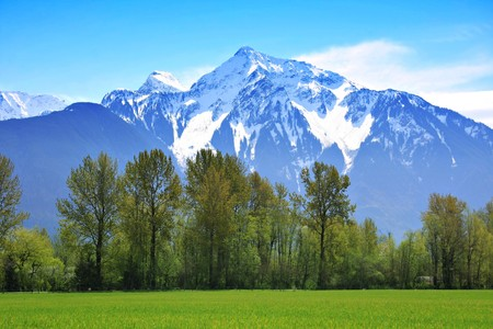 mountain top: Snow capped Rocky Mountains, British Columbia, Canada.  Stock Photo