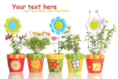 Coloridas pintadas macetas con flores bonitas.  Foto de archivo - 7360034