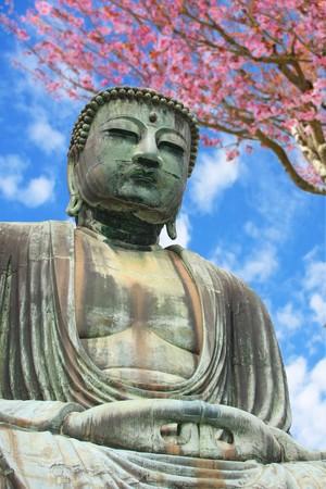 The big Buddha, Diabutsu, in Kamakura, Japan. photo
