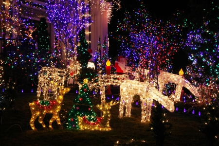 christmas lights display: Festive Christmas light display.