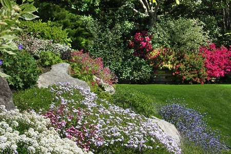 Flowering rock garden in spring. More images of this award winning garden in my portfolio. Also available in vertical. Stock Photo