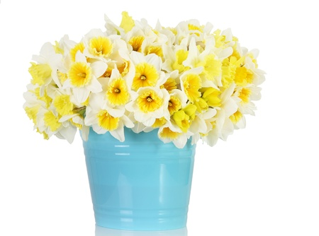 Large bunch of daffodils in a blue container. photo