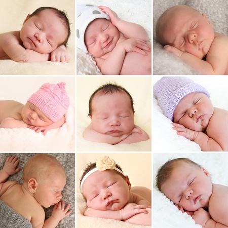 newborn baby: A collection of newborn baby faces. Boys and girls. All images also available in high resolution.  Stock Photo