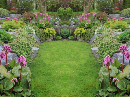 alchemilla: Letto giardino perenne bella primavera. Disponibile anche in orizzontale.  Archivio Fotografico
