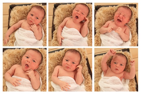 Composite of six images of a newborn baby boy with several different expressions.  photo