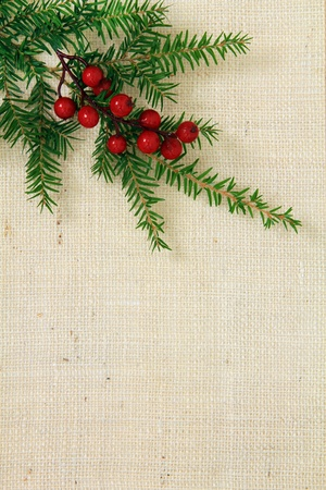 Kerst jute achtergrond met groenblijvende en hulst.