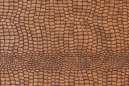 snakeskin background Stock Photo