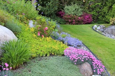 manicured: Beautiful garden of spring flowers.