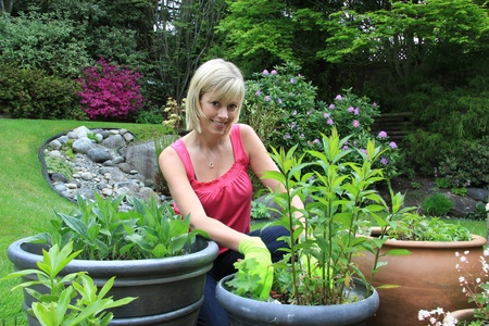 perennial: Happy lady working in the garden