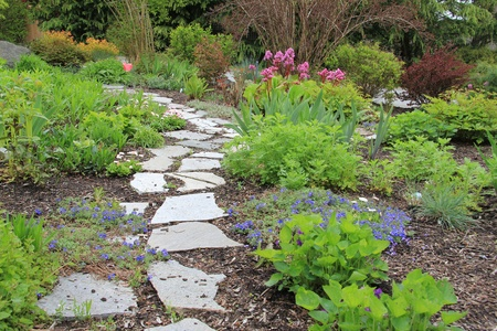 Beautiful paved stone walkway in a spring garden   photo