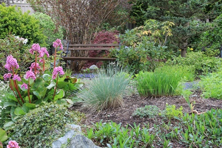 front or back yard: Spring flower garden and bench  Stock Photo