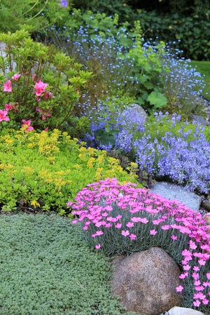 backyards: Beautiful springtime flowerbed