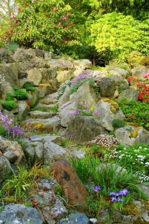 perennials: Beautiful rock garden path in spring time.  Stock Photo