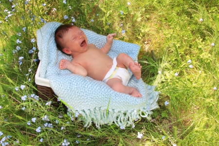 Newborn baby boy crying in a basket outside   photo