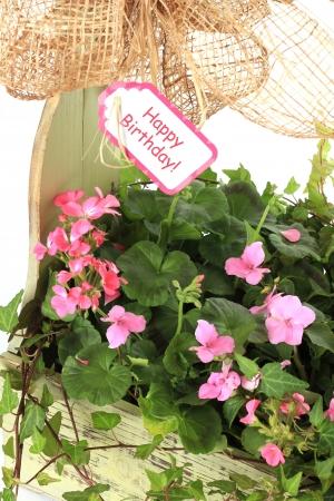 Happy birthday flower arrangement 版權商用圖片 - 13850460