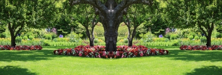 Beautifully manicured park garden in summer   Stock Photo - 14299377