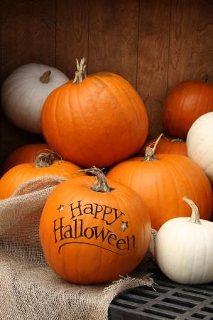 Autumn pumpkin display  Shallow depth of field, focus on the front pumpkin Stock Photo - 15422509