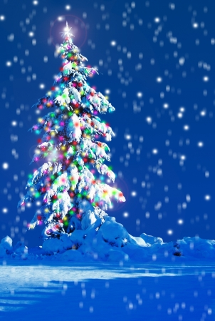 Snow covered Christmas tree outside at night    photo