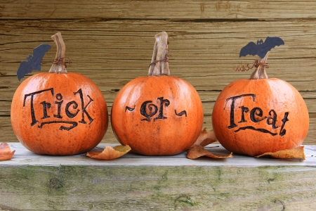 Three small trick or treat pumpkins  Stock Photo - 15432068
