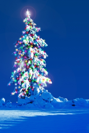 Snow covered Christmas tree outside at night. Stock Photo - 15432065