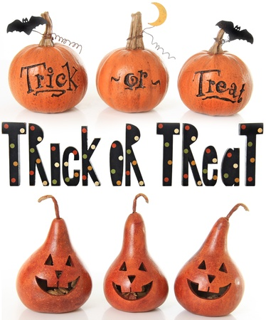 Collection of trick or treat pumpkins.  Stock Photo - 15630658